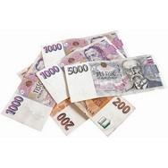 Online nebankovní rychlé pujcky ihned teplá rekonstrukce