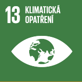 SDG13