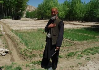 Češi pomáhají drobným zemědělcům v Afghánistánu pěstovat tradiční plodiny (Foto: Jan Svitálek, PIN)